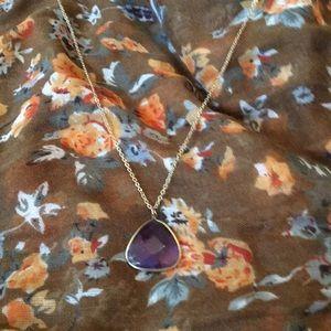 Long purple gem necklace.